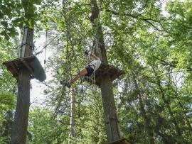Clients dans les arbres, au parc Tépacap de Bitche