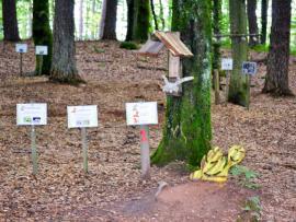 Le monde Tapatrouvé du parc Tepacap de Bitche