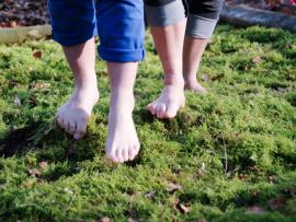 Tépienu, la nature se met à vos pieds