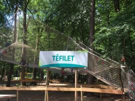 Le filet suspendu de 200 m2 du parc Tépacap de Bitche