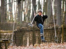 Tépatrial un parcours d'arbre en arbre, à 50 cm du sol au parc Tépacxap de Bitche